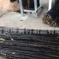 紫竹笛箫材料工艺品紫竹竿装饰装潢紫竹乐器紫竹大量供应